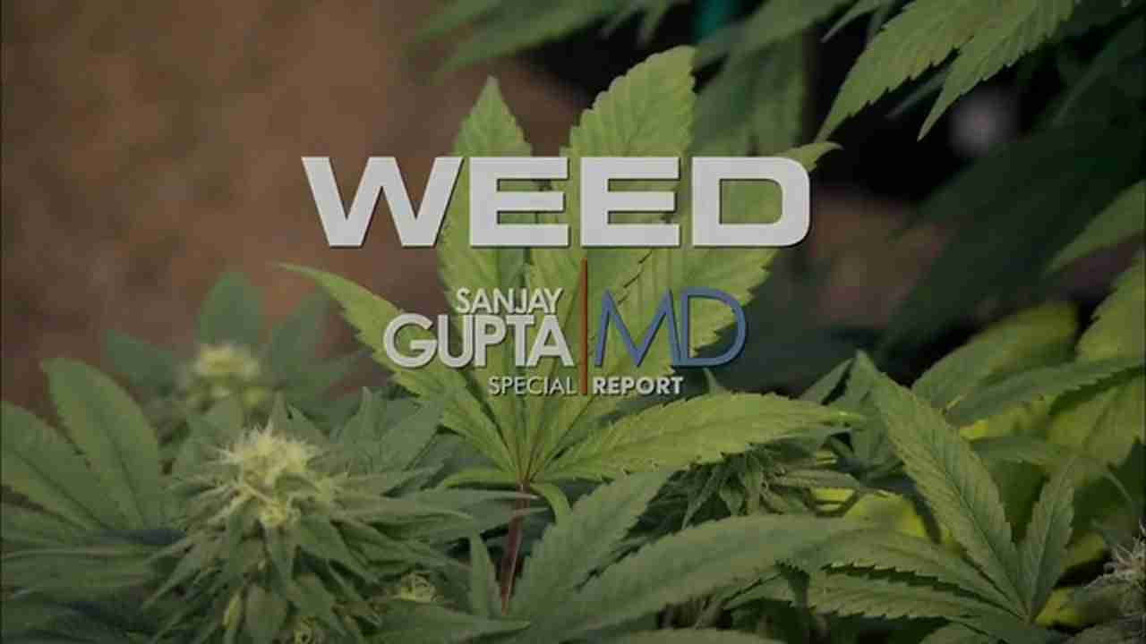 CNN's Special Report: Weed I w/ Dr. Sanjay Gupta